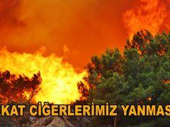 CİĞERLERİMİZ YANMASIN!!!